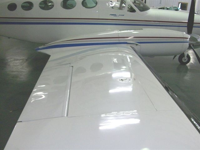 """Top of right hand wing showing the """"shine"""" Shows very well"""